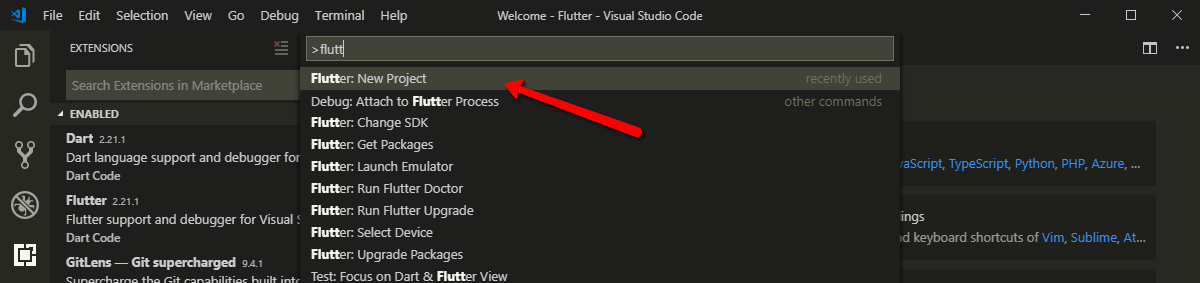 Начало создания проекта Flutter в VS Code