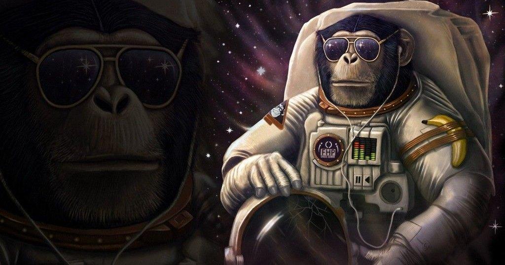 Предсказано появление четвероруких космонавтов. С хвостом