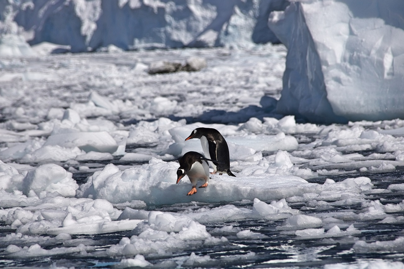 Новый фонд от Linux Foundation — он будет развивать edge computing - 2