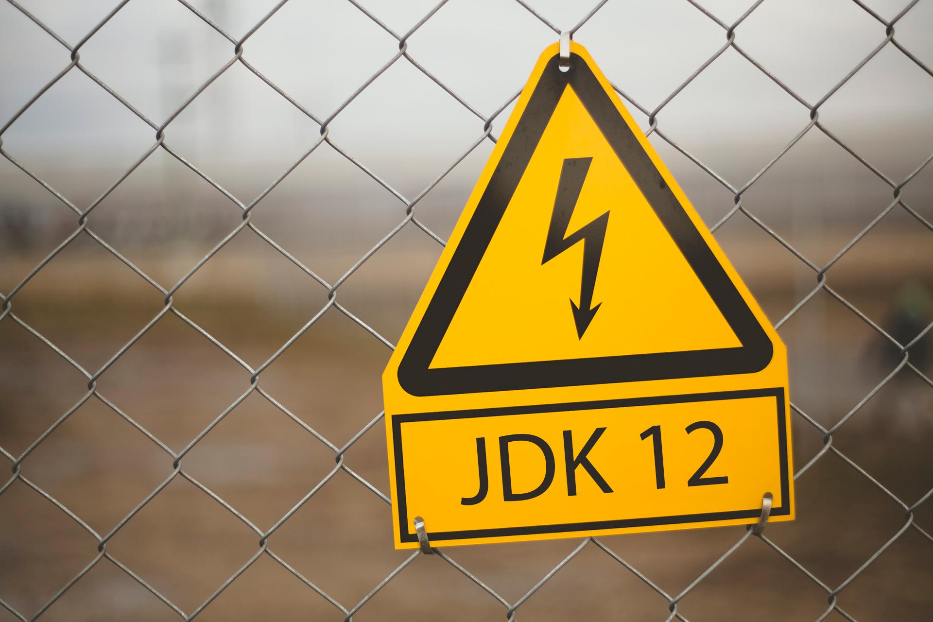 Релиз-кандидат JDK 12: Shenandoah, G1, JMH, Arm64. Баги в Swing наносят ответный удар - 1