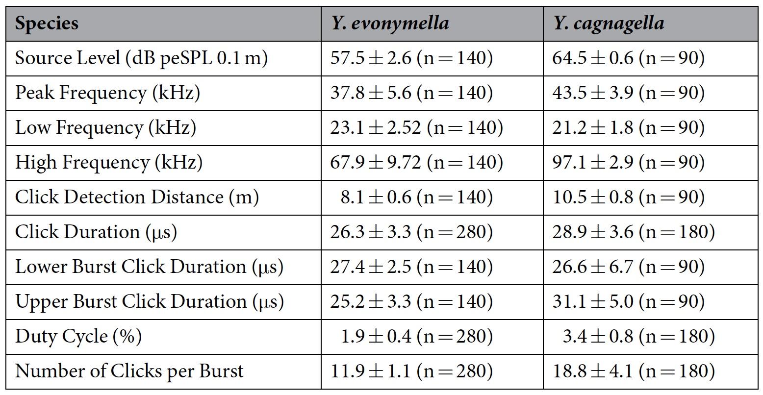 Звуковая диверсия: механизм генерации ультразвуковых щелчков у ночных мотыльков как защита от летучих мышей - 6