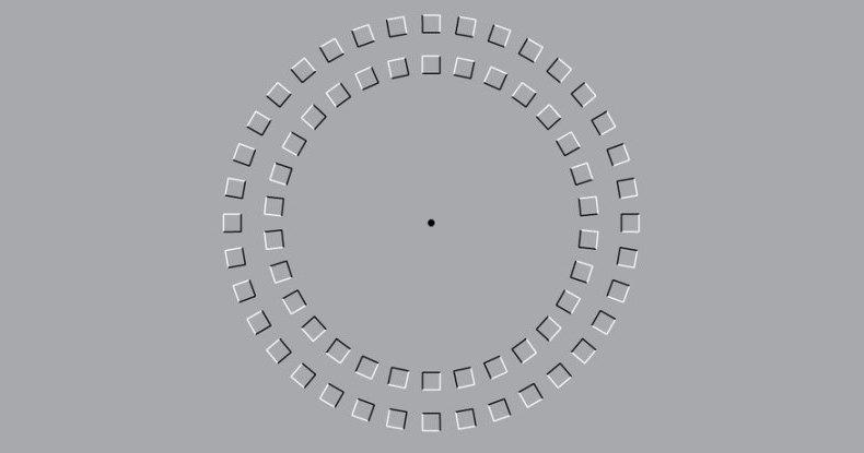 Отличает ли мозг оптическую иллюзию от реальности