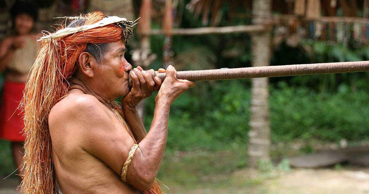 Древние азиаты оказались первыми экологами