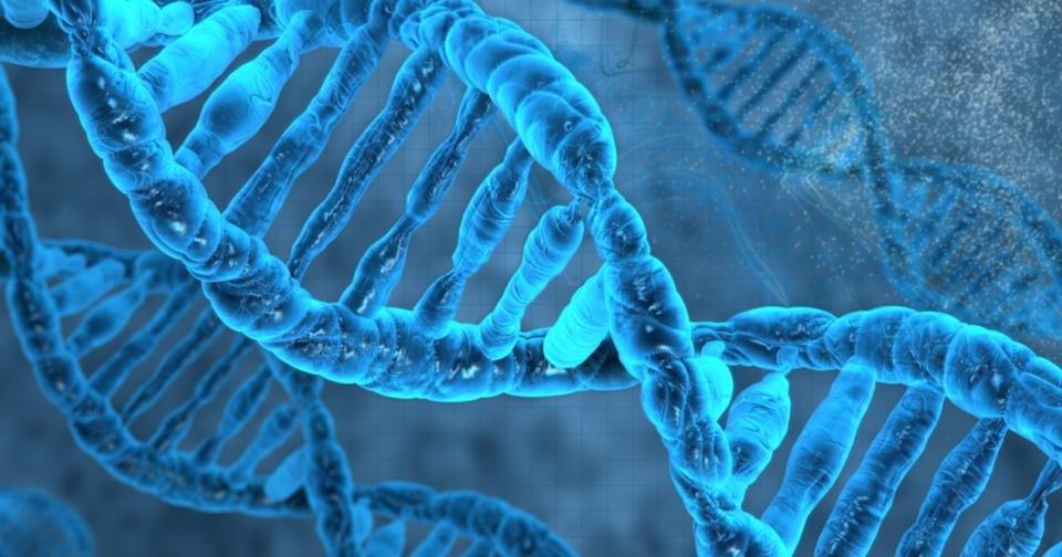 Синтезирована «инопланетная» ДНК