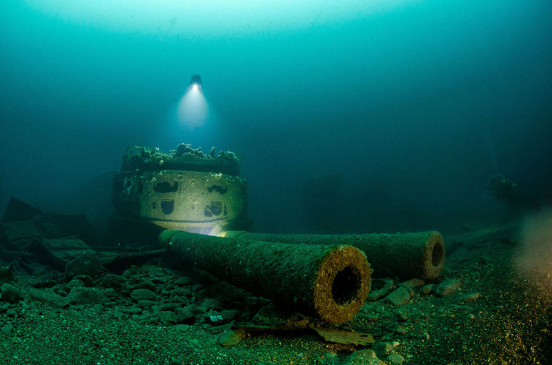 Лучшие подводные снимки года