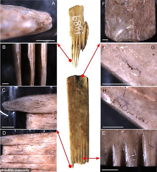 Найден самый древний инструментарий для набивки тату