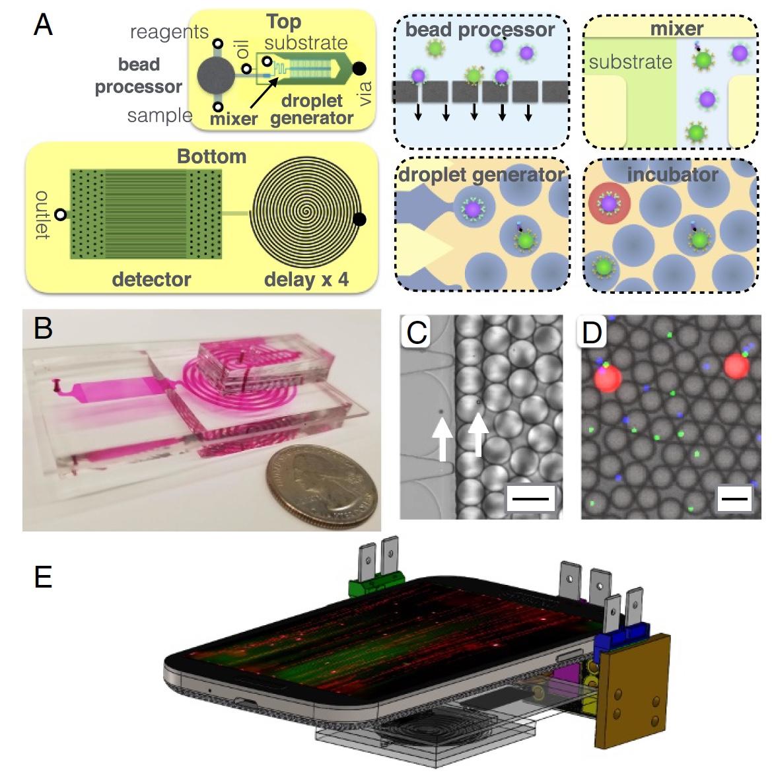 Не для селфи: цифровой иммуноферментный анализ посредством нового чипа, встраиваемого в смартфон - 4