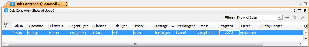 Статья про то, как CommVault делает бэкап PostgreSQL - 5