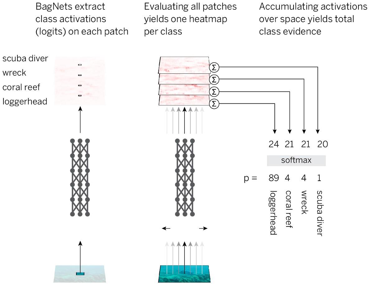 У нейросетей удивительно простая стратегия классификации изображений - 2