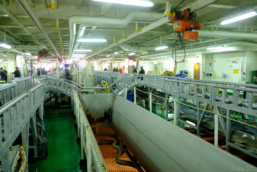 Строительство линии связи Сахалин – Курилы. Экскурсия на Segero — судно-кабелеукладчик - 13