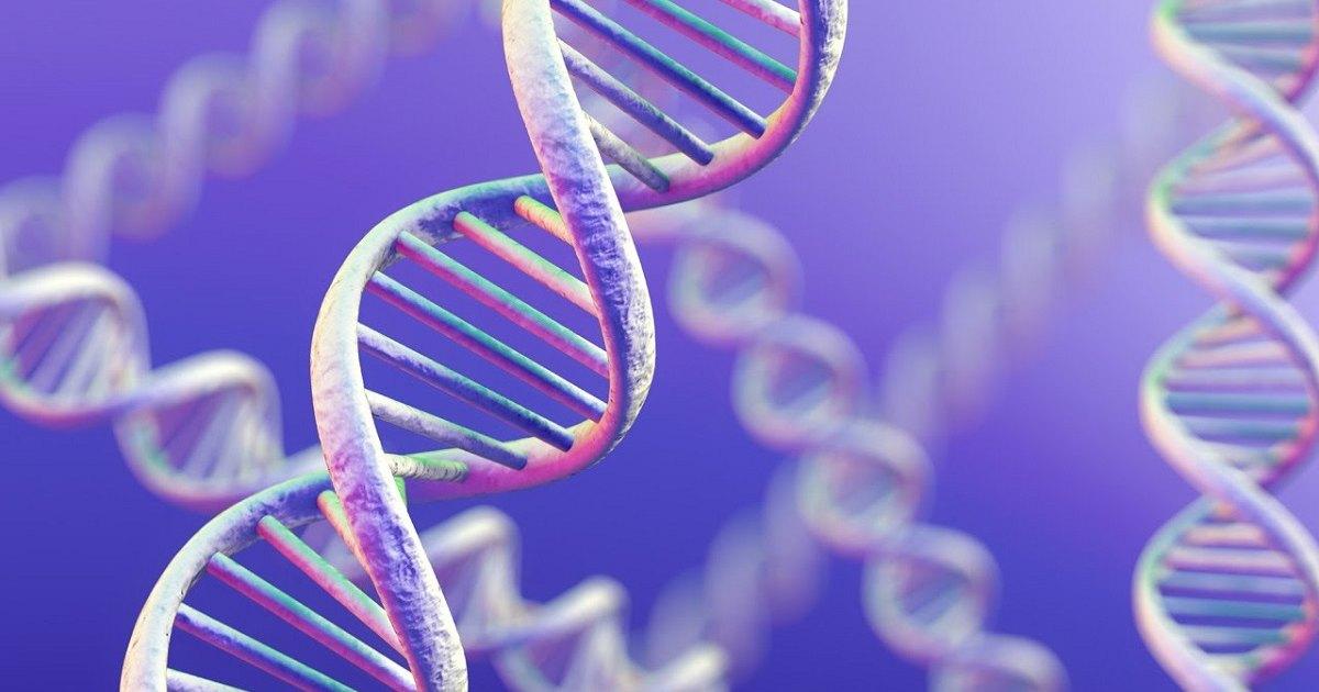 Убийцу нашли по данным генетической генеалогии