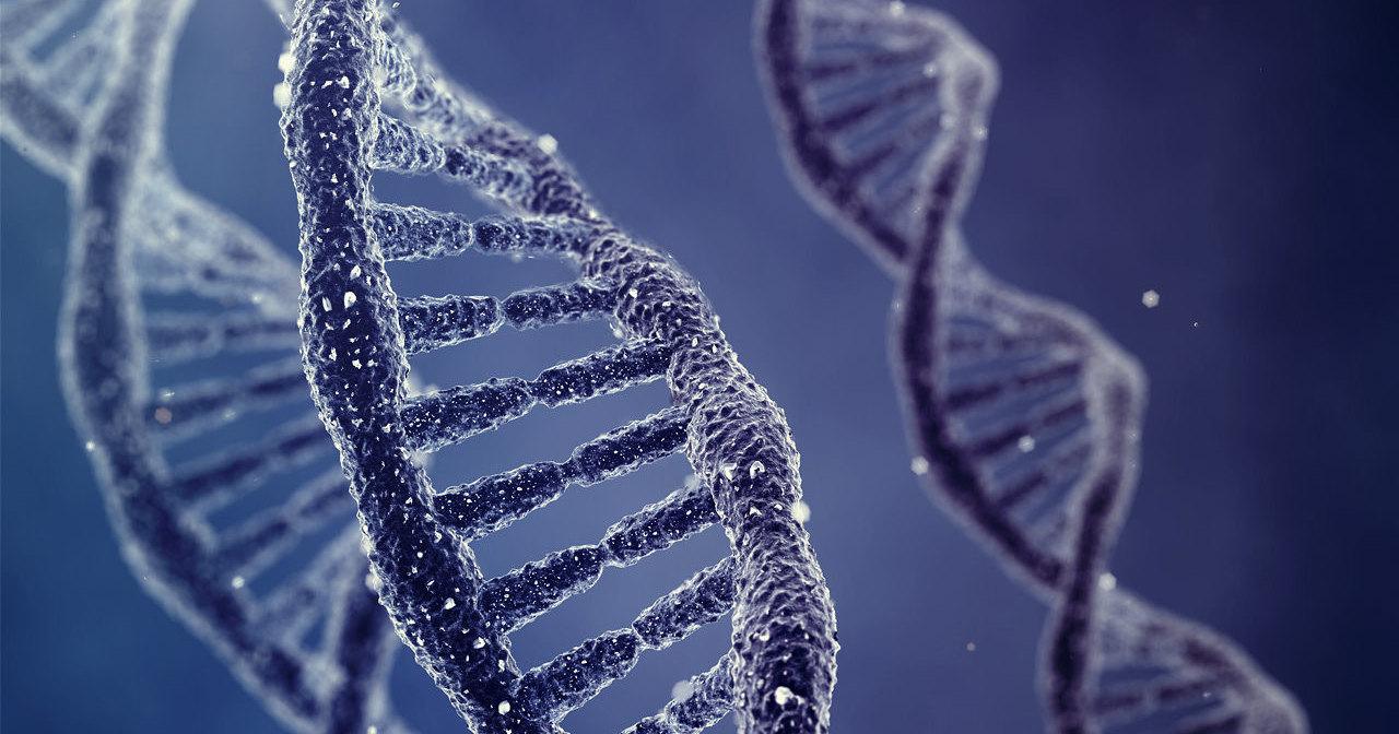 Ученые заставили молекулу ДНК делить и умножать