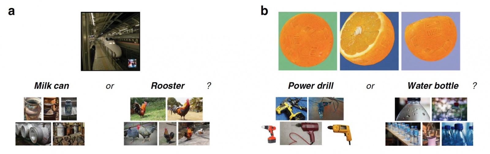Машинное зрение vs интуиция человека: алгоритмы нарушения работы программ распознавания объектов - 6
