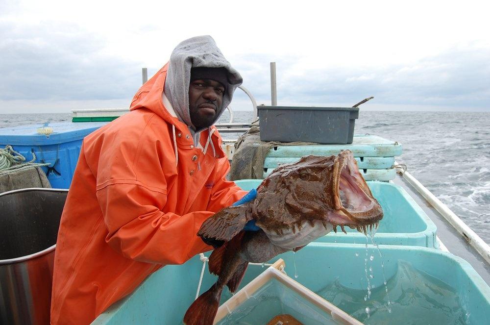 10 малоизвестных рыб-убийц