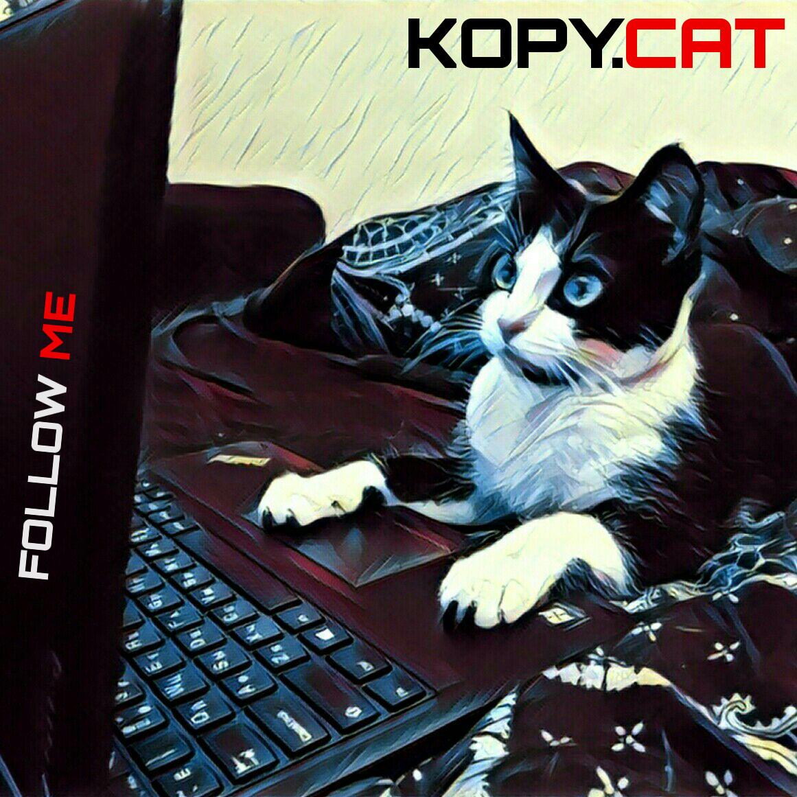 Носорог внутри кота — запускаем прошивку в эмуляторе Kopycat - 1
