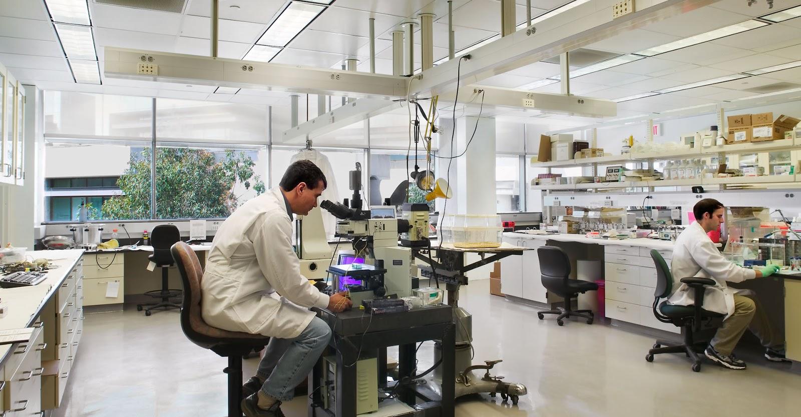 Стартапы в сфере омолаживающей биотехнологии, которые будут актуальны в 2019 - 1