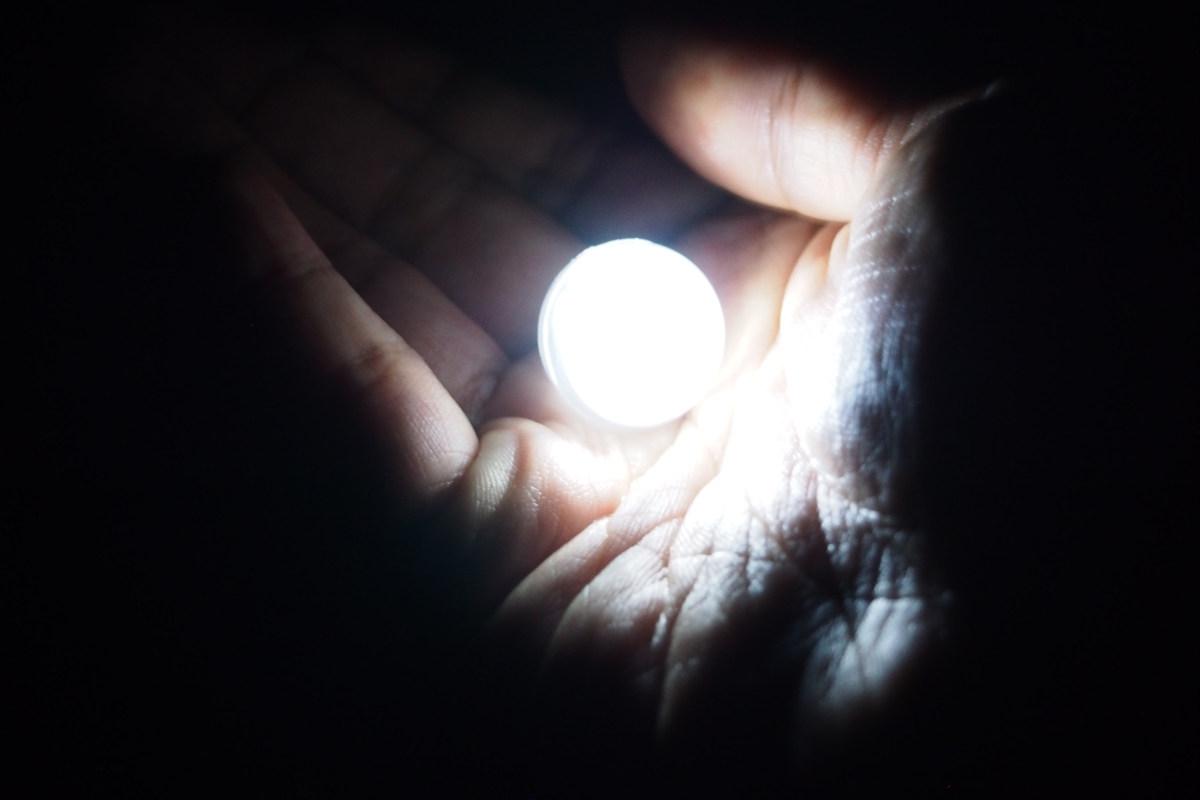 Биохимические лампочки - 1