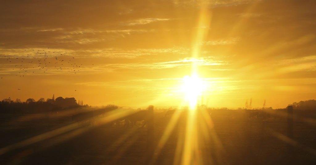 Аллергия на солнечный свет обойдется британцу в 100 тысяч фунтов