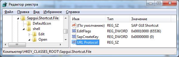 Запуск SAP GUI из браузера - 2