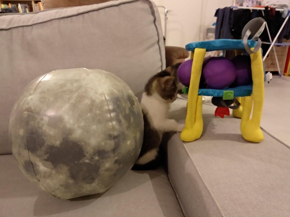 Лунная миссия «Берешит» — есть посадка на Луну (технически) - 137
