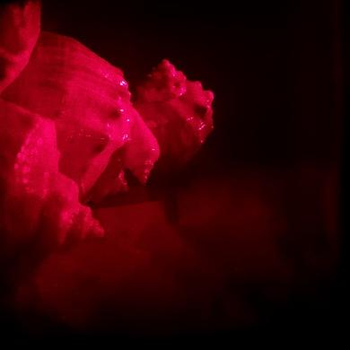 Любительская голография — галогенсеребряные фотоматериалы - 15