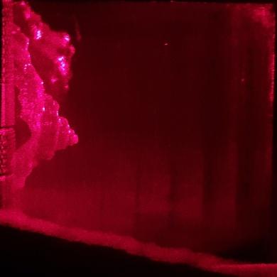 Любительская голография — галогенсеребряные фотоматериалы - 8
