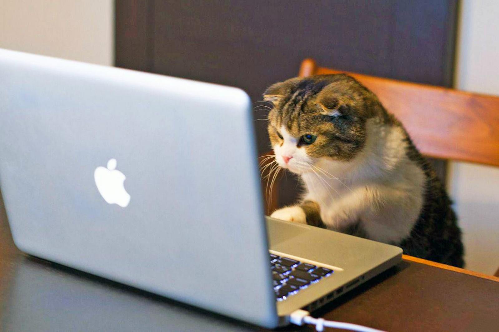 9 советов по использованию библиотеки Cats в Scala - 1