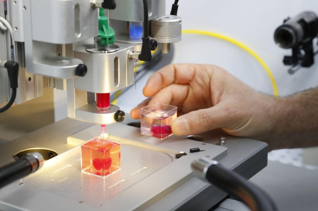 Израильские учёные впервые в мире напечатали живое сердце - 5