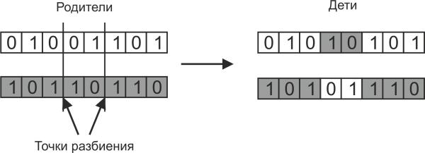 Optlib. Реализация генетического алгоритма оптимизации на Rust - 3