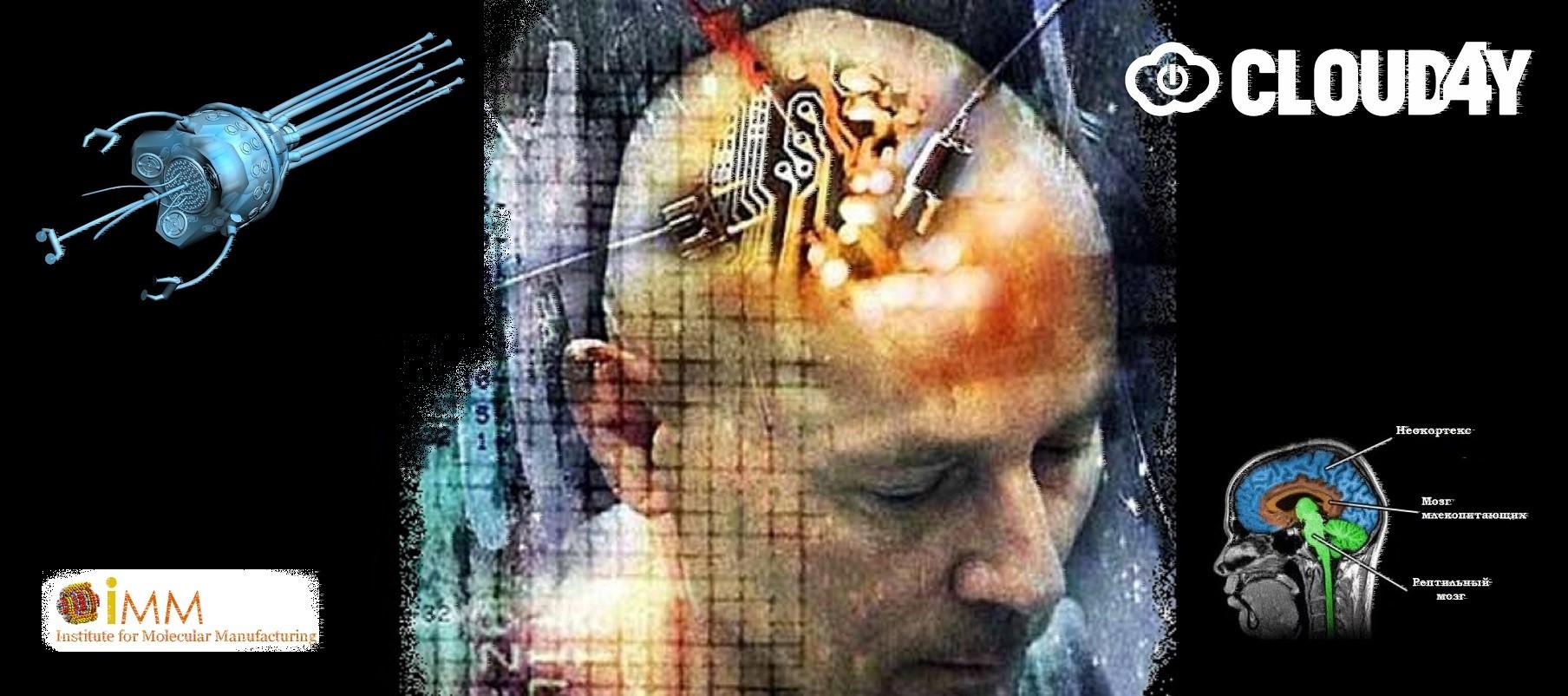 Через «пару десятилетий» мозг подключат к Интернету - 1