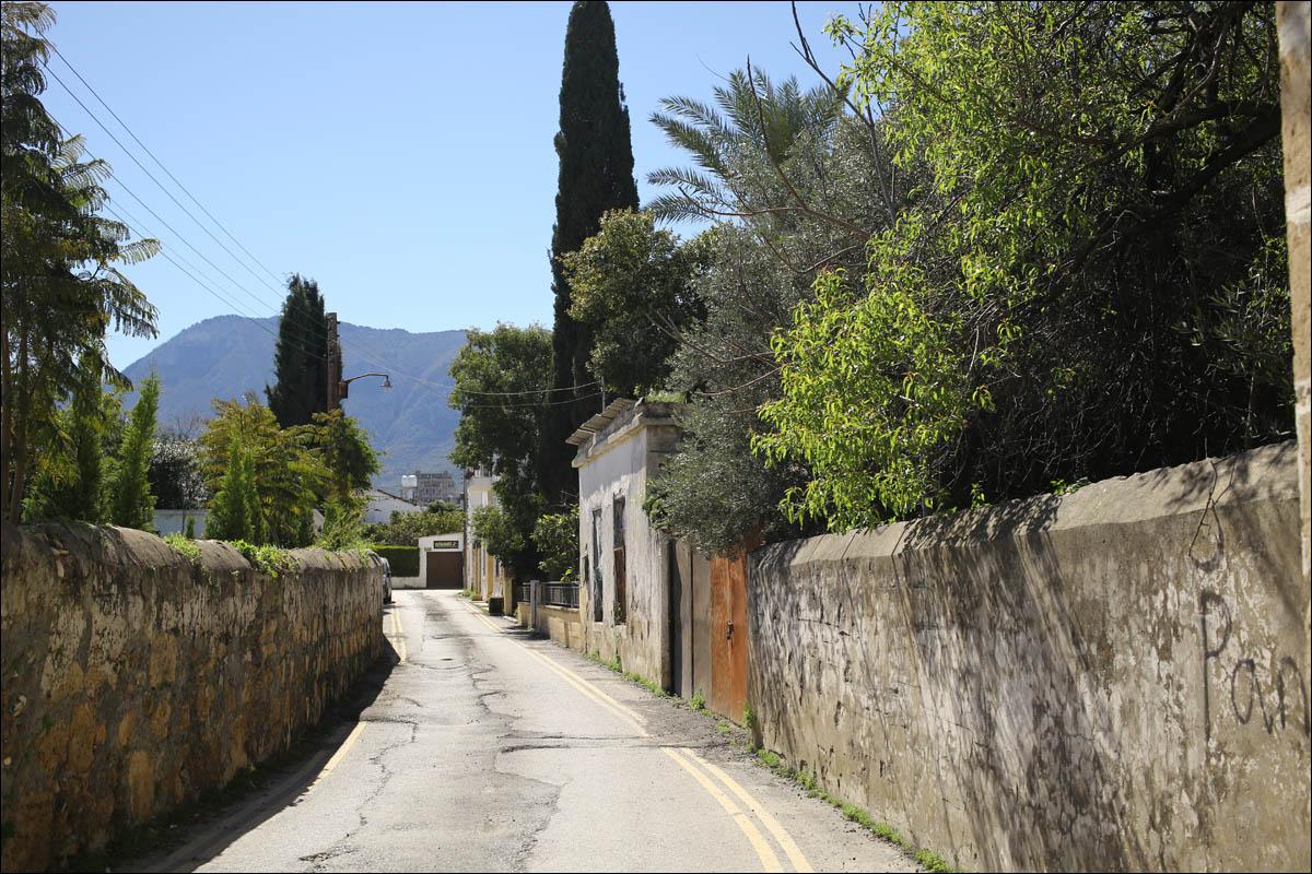 Кипр — минутка мягкого психодела - 35