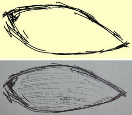 Обзор цифровой ручки MT6081 — ваши заметки сразу на компьютере - 14