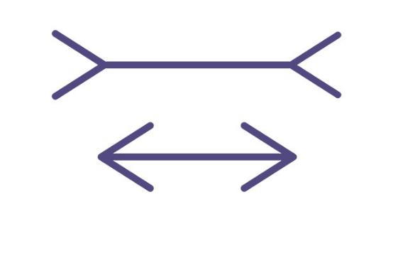Когнитивное выпрямление: сеанс иллюзий с полным разоблачением - 4