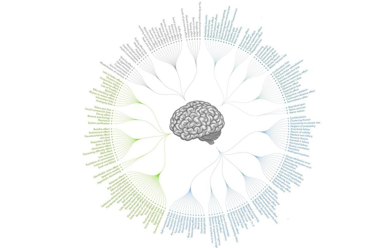 Когнитивное выпрямление: сеанс иллюзий с полным разоблачением - 1