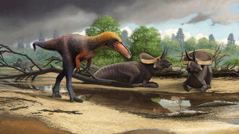 Описан новый вид динозавров