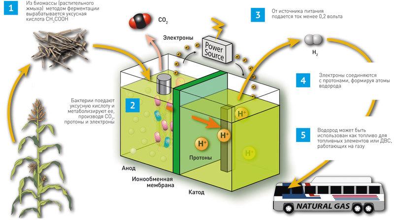 Справочная: как работают водородные автомобили и когда они появятся на дорогах - 3