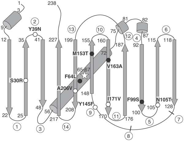 Разработка белков в облаке с помощью Python и Transcriptic или Как создать любой белок за $360 - 5