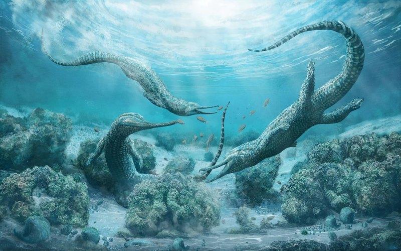 Описан огромный морской хищник, живший 210 млн лет назад
