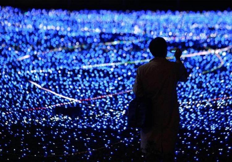 Французский регулятор предупредил о вреде светодиодных ламп для глаз