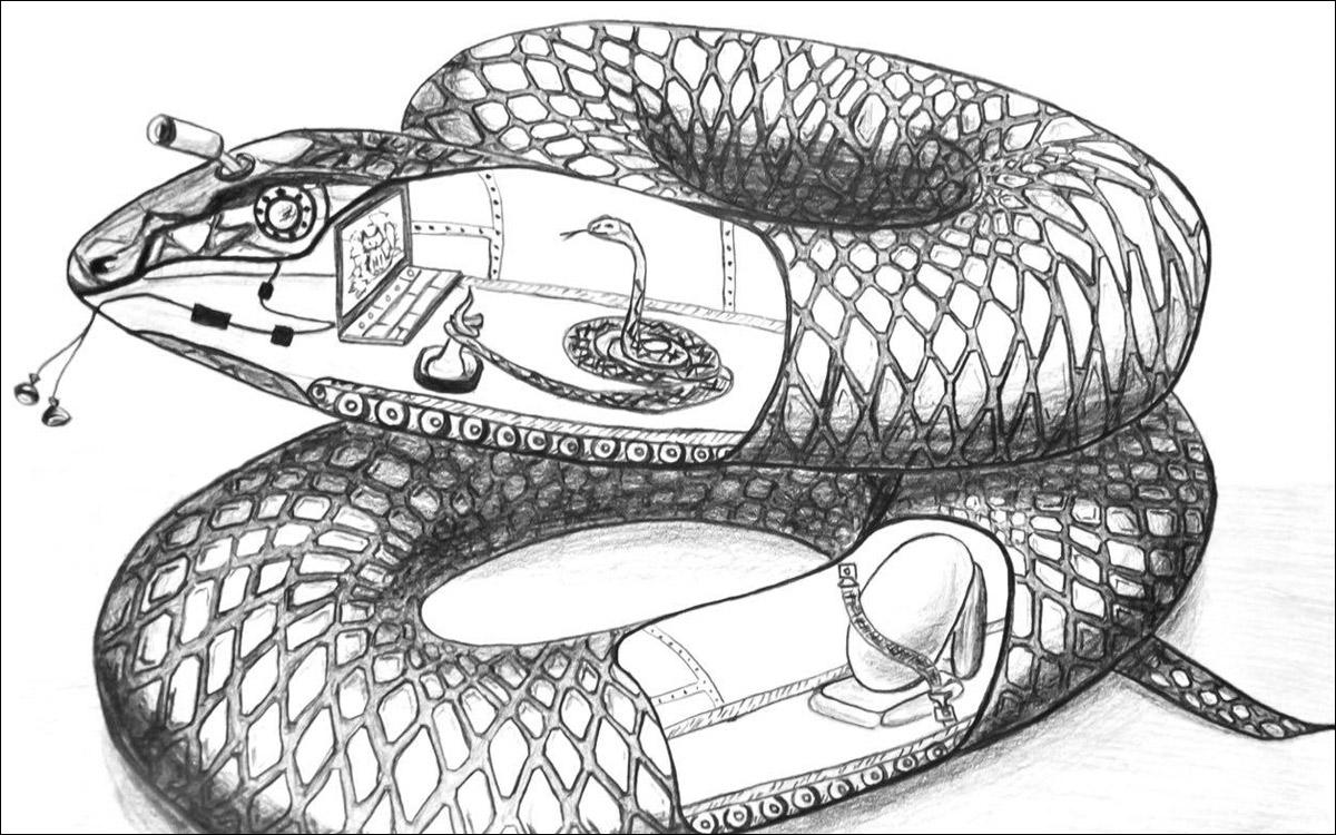 Разбираем змею - 1
