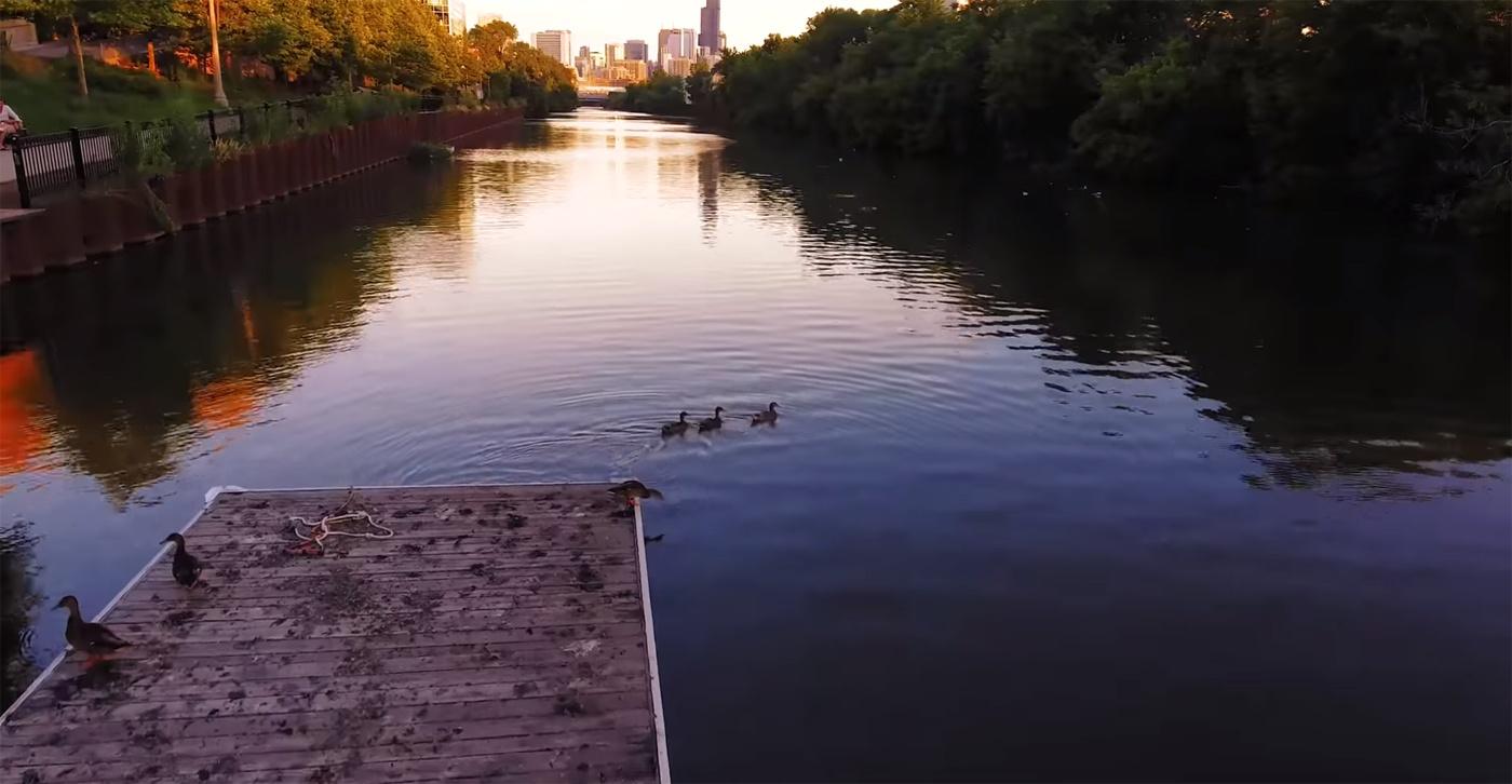 Сила толпы. Как в Чикаго разработали мусороедного робота – очистителя рек - 10