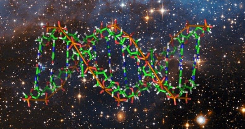 Астронавты впервые отредактировали геном в космосе