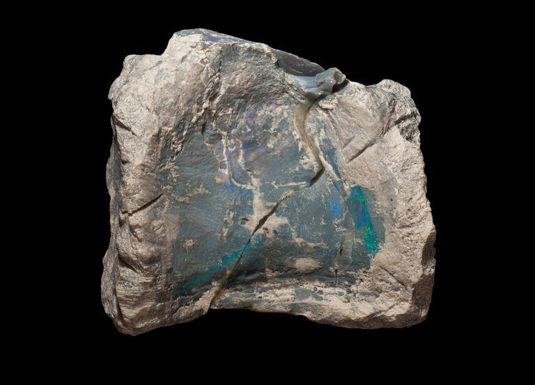 Тот самый опал, родившийся внутри окаменелости