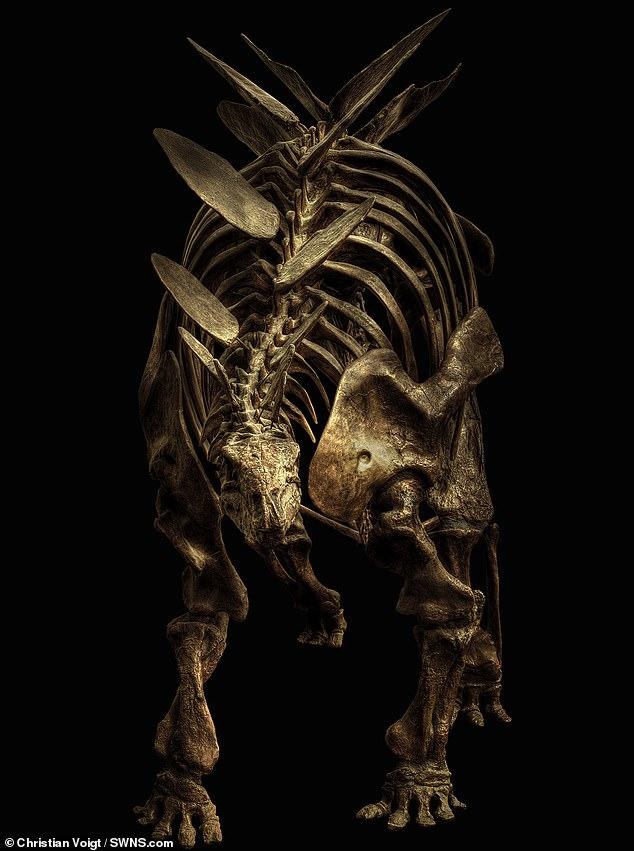 Потрясающая подборка фотографий скелетов динозавров «взорвала» Сеть