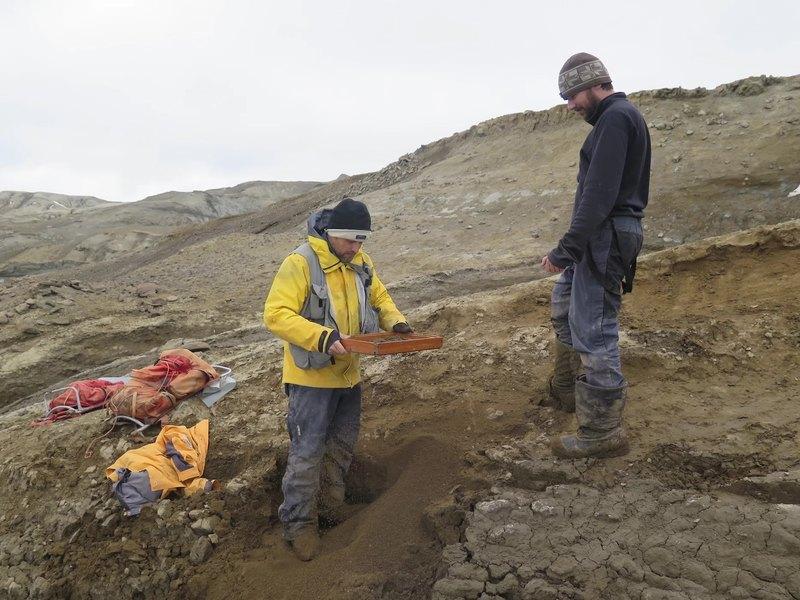 Древняя рептилия из Антарктиды побила рекорд по размерам тела