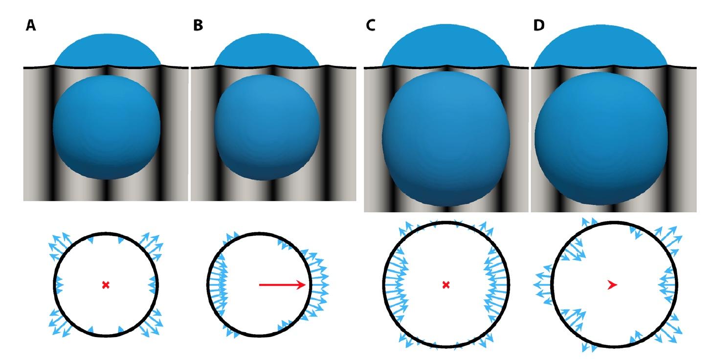 Жидкие альпинисты: манипуляции с каплями воды для создания лабораторий на чипе и технологии самоочистки - 4