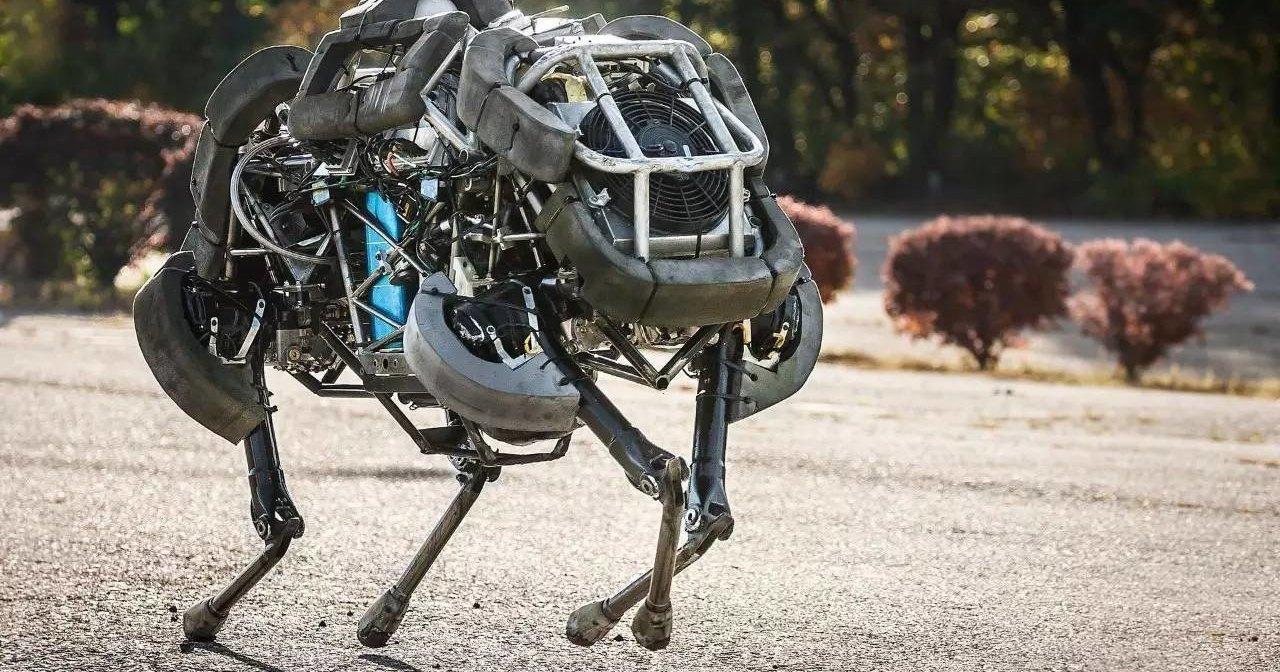 Как собака реагирует на робота Boston Dynamics