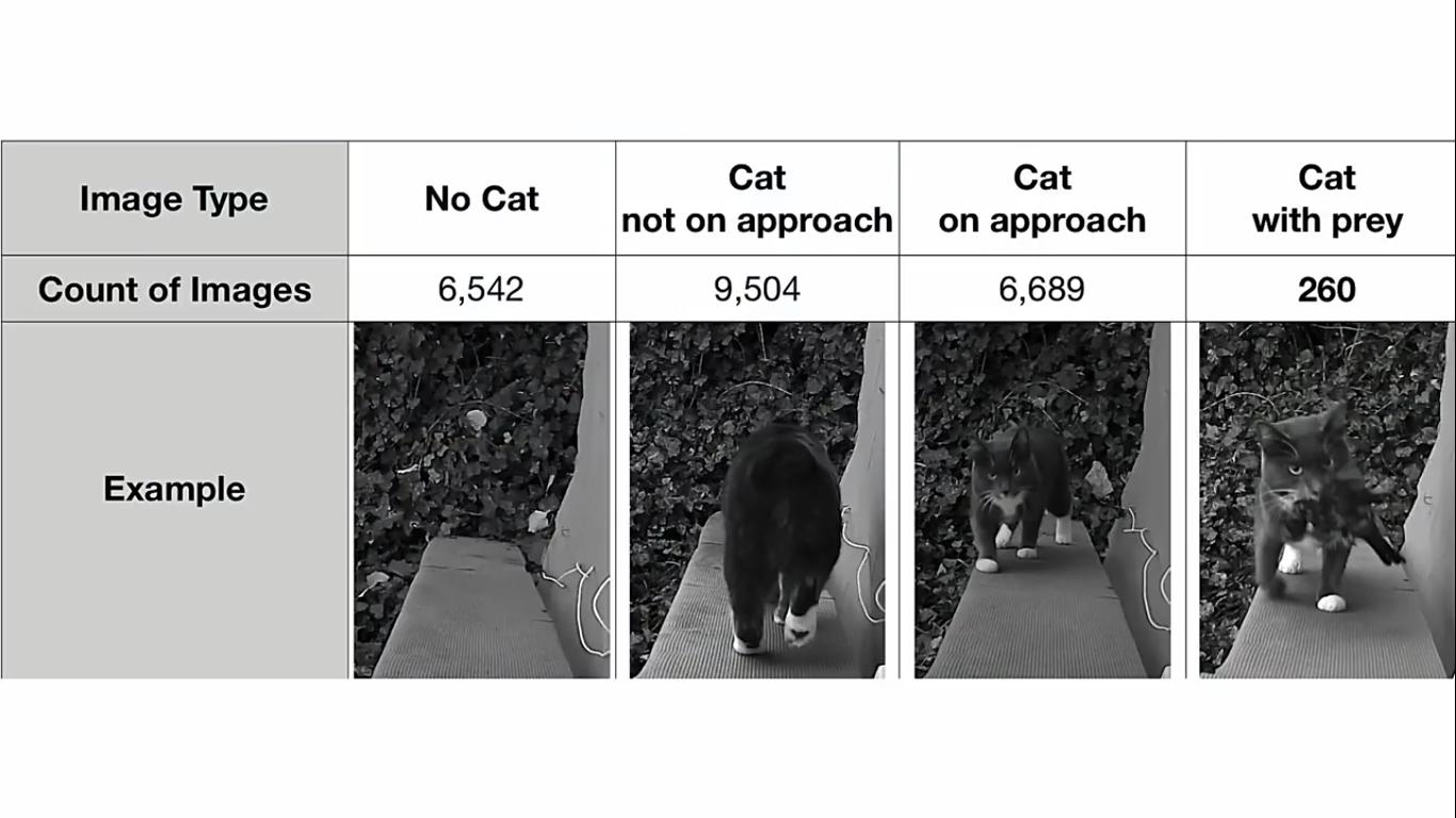 Инженер Amazon создал блокирующее устройство с ИИ, которое не пускает в дом кота с уличной добычей - 13