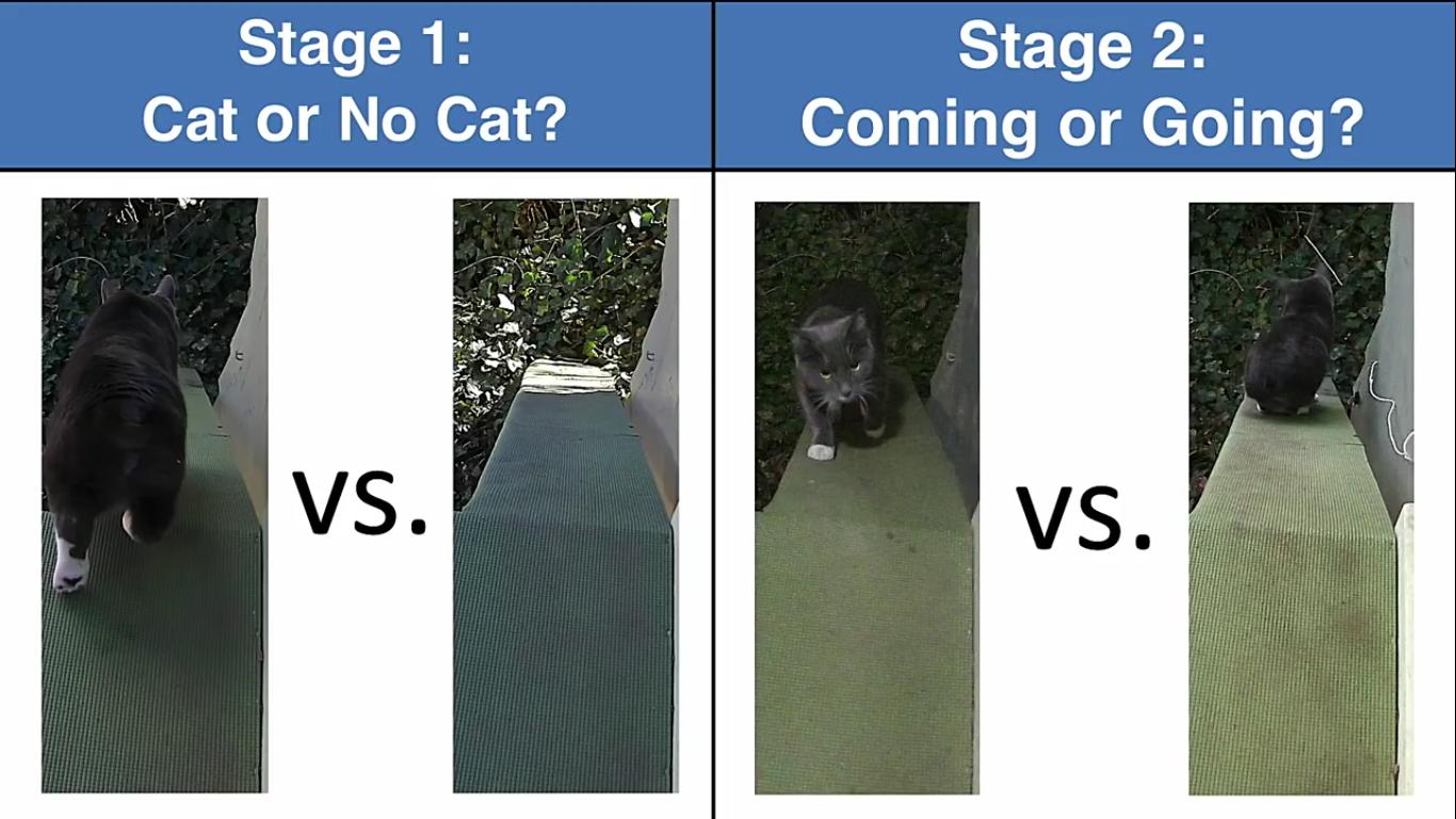 Инженер Amazon создал блокирующее устройство с ИИ, которое не пускает в дом кота с уличной добычей - 15