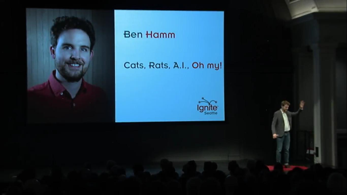 Инженер Amazon создал блокирующее устройство с ИИ, которое не пускает в дом кота с уличной добычей - 2